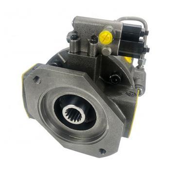 Rexroth R901079432 PVV1-1X/027RA15RMB Vane pump